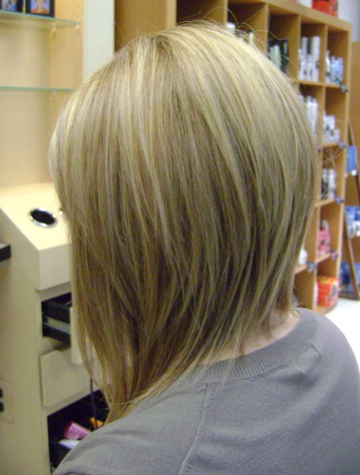 Long Bob Haircuts Back View With Regard To Long Inverted Bob Back View Hairstyles (View 9 of 25)