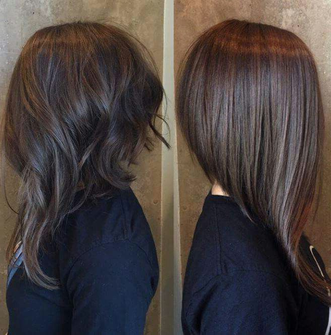 Long Front Short Back   Hairstyles In 2019   Hair Cuts, Hair Styles In Short In Back Long In Front Hairstyles (View 2 of 25)