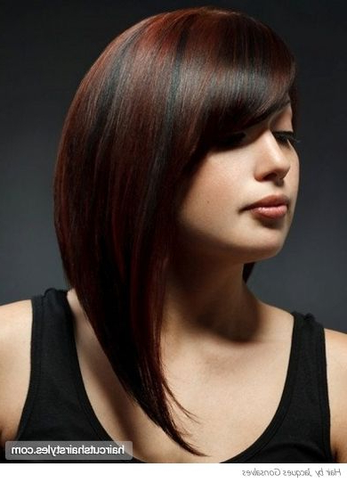 Long Wedge Haircut | Chic Super Sleek Long Hair Style Long With Regard To Chic Long Hairstyles (View 24 of 25)