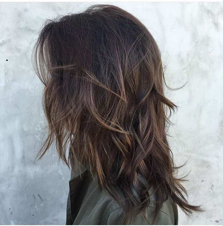 Featured Photo of Long Layered Light Chocolate Brown Haircuts