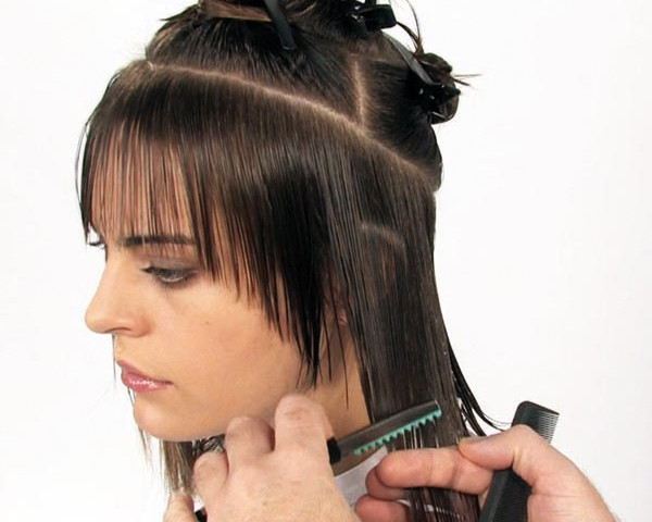 Razor Cut Hairstyles For Long Hair | Sophie Hairstyles – 37749 Inside Long Razor Haircuts (View 17 of 25)