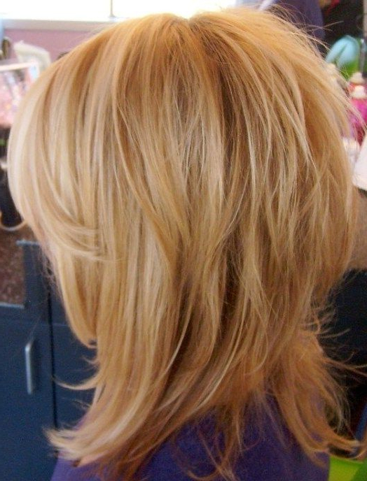 Shag Haircuts, Fine Hair And Your Most Gorgeous Looks | Hair With Messy Layered Haircuts For Fine Hair (View 7 of 24)