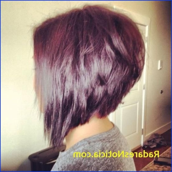 Short Back Long Front Haircuts 15 Inspirations Of Long Front Short In Hairstyles Long Front Short Back (View 11 of 25)