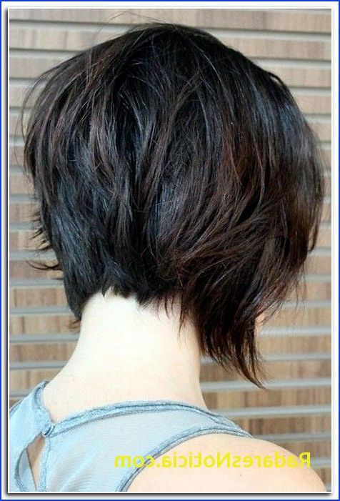 Short Hair In The Back And Long In The Front Long Front Short Back Intended For Short In Back Long In Front Hairstyles (View 14 of 25)