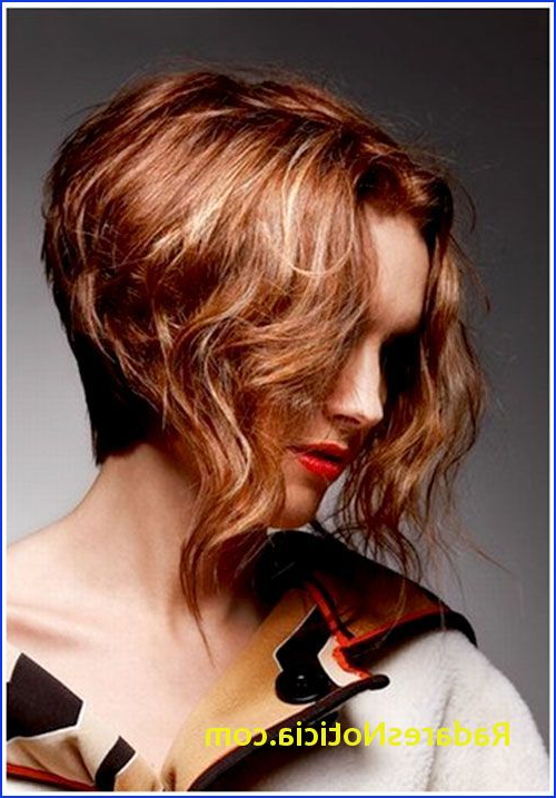 Short Haircut Long In Front – Best Short Hair Styles In Hairstyles Long Front Short Back (View 20 of 25)