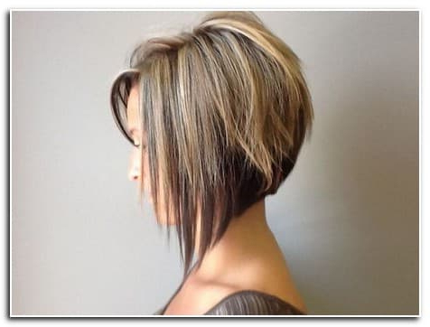 Short In Front Long In Back Womens Hairstyles | Womens Hairstyles With Hairstyles Long In Front Short In Back (View 7 of 25)