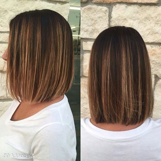 Stunning One Length Bob Haircuts! In 2019 | Hairstyles | Hair, Brown Intended For Long Hairstyles One Length (View 12 of 25)