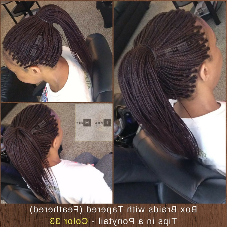10 New Photos Of Box Braids – 2018 With Regard To Latest Layered Micro Box Braid Hairstyles (View 19 of 25)