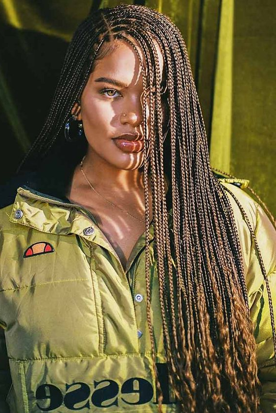 101 Micro Braids For You – Easy Hairstyles Inside Most Current Side Swept Twists Micro Braids With Beads (View 25 of 25)