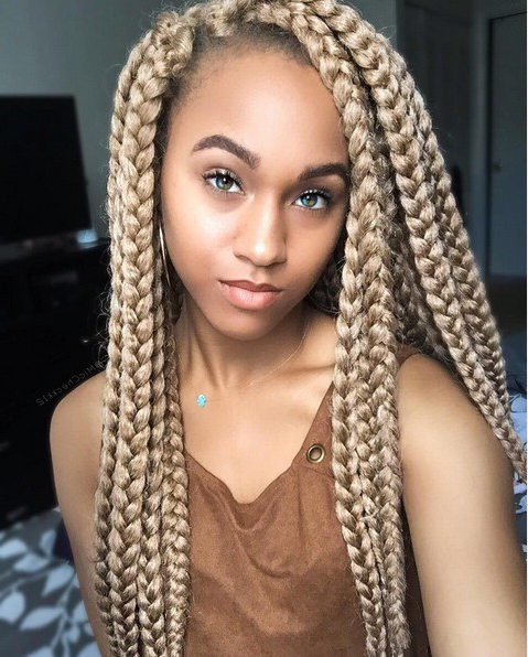 12 Pretty African American Braided Hairstyles – Popular Haircuts Intended For Recent Centre Parted Long Plaits Braid Hairstyles (View 5 of 25)