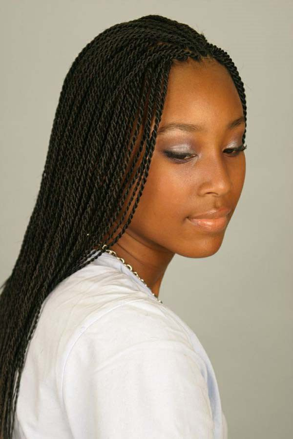 120 Twist Braids Ideas That You Will Fall In Love With! Within Most Recently Thick And Luscious Braid Hairstyles (View 24 of 25)