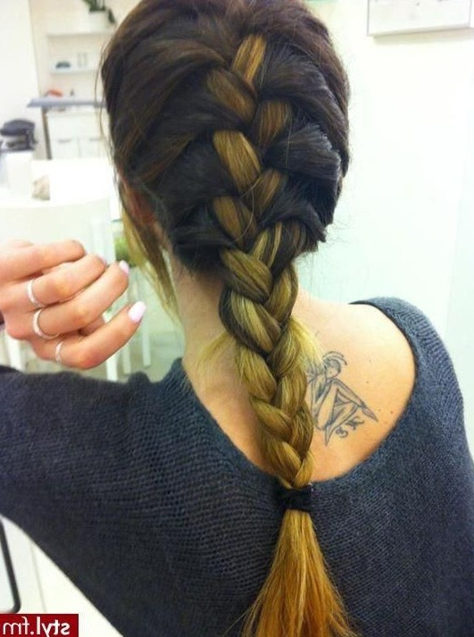 15 Hottest Braided Hairstyles – Popular Haircuts Within Most Popular Thick And Luscious Braid Hairstyles (View 7 of 25)