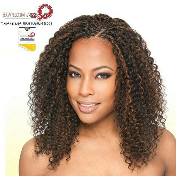 17 Lovely Micro Braid Crochet Hair Galleries Inside Most Popular Curly Crochet Micro Braid Hairstyles (View 22 of 25)