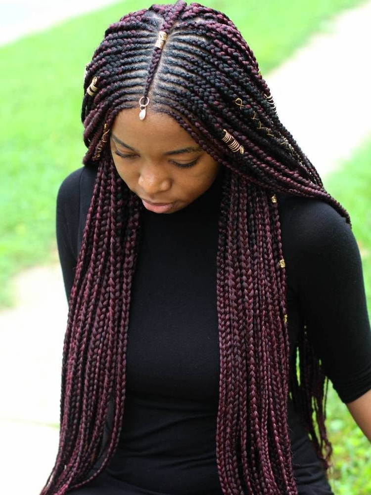 Featured Photo of Centre Parted Long Plaits Braid Hairstyles