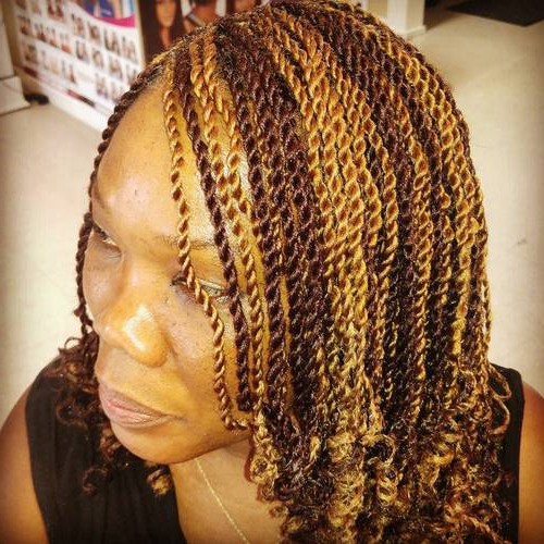 20 Cool Twisted Hairstyles For Natural Hair   Styles Weekly With Regard To Most Up To Date Tiny Twist Hairstyles With Caramel Highlights (View 18 of 25)