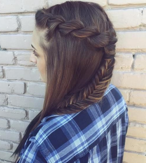 20 Inspiring Ideas For Rope Braid Hairstyles   Cute   Hair Inside Current Rope And Fishtail Braid Hairstyles (View 5 of 25)