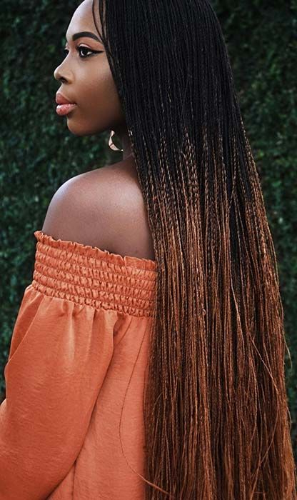 23 Eye Catching Twist Braids Hairstyles For Black Hair Throughout Most Up To Date Red And Brown Micro Braid Hairstyles (View 25 of 25)