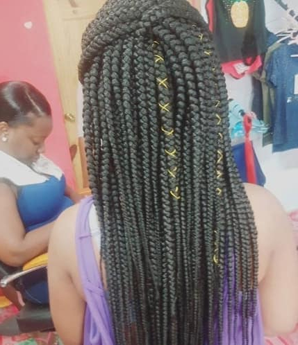 31 Box Braids For Kids 2019, Perfect Styles With Detailed With Regard To Current Purple Passion Chunky Braided Hairstyles (View 23 of 25)