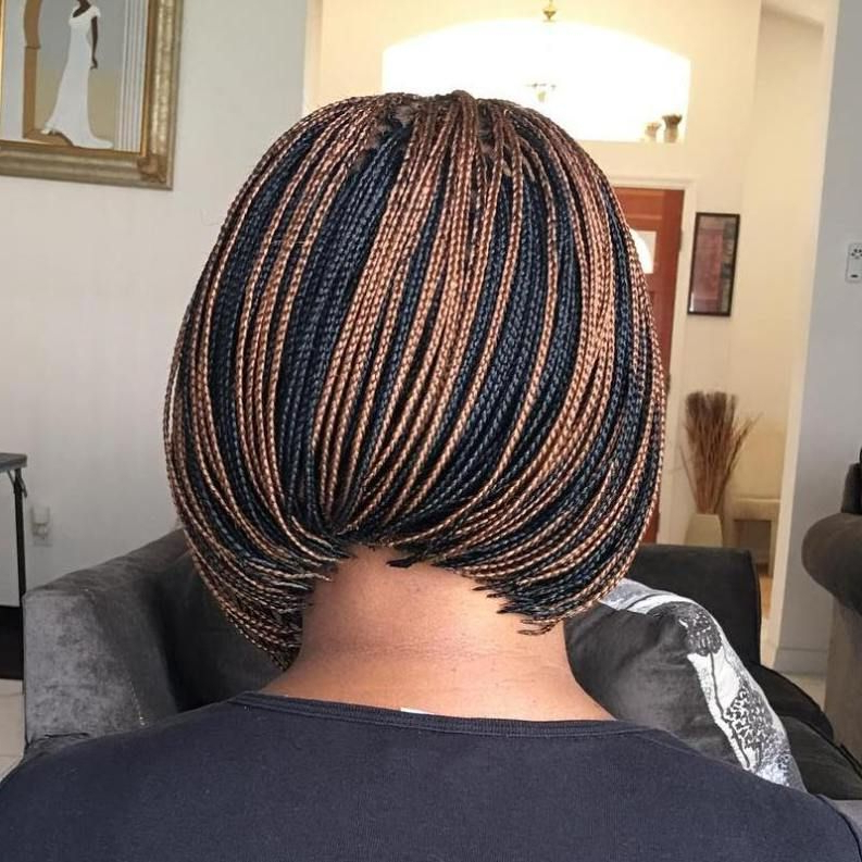 40 Ideas Of Micro Braids And Invisible Braids Hairstyles In in Latest Zebra Twists Micro Braid Hairstyles