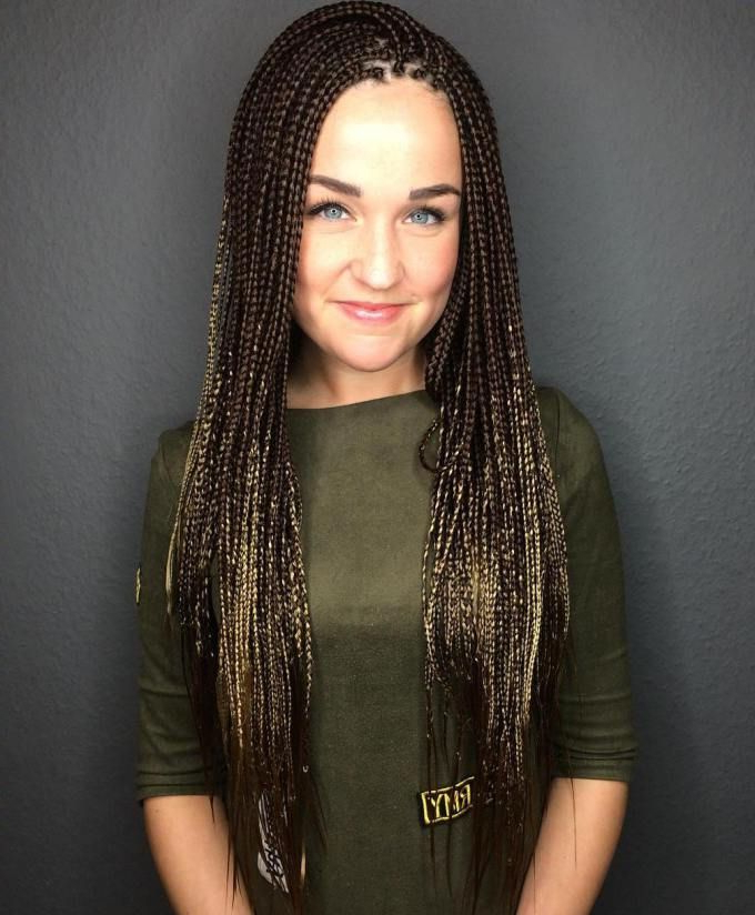 40 Ideas Of Micro Braids And Invisible Braids Hairstyles pertaining to Best and Newest Layered Micro Box Braid Hairstyles