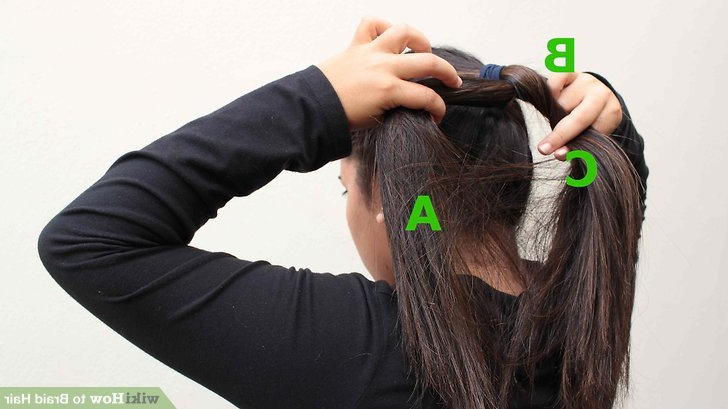 5 Ways To Braid Hair – Wikihow Pertaining To Best And Newest Tight Green Boxer Yarn Braid Hairstyles (View 25 of 25)