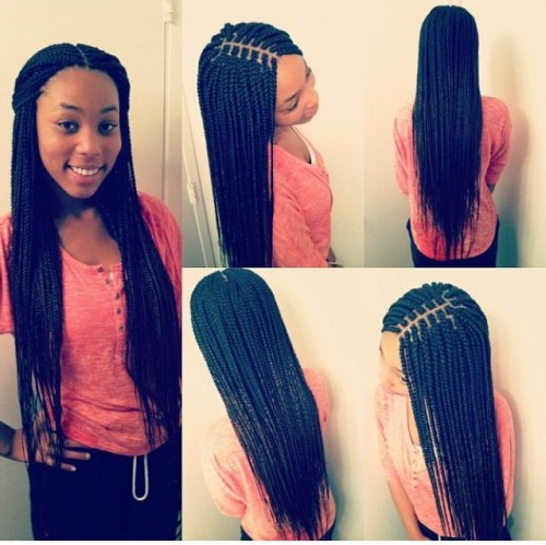 50 Goddess Braids Hairstyles   Herinterest/ Throughout Most Current Centre Parted Long Plaits Braid Hairstyles (View 22 of 25)
