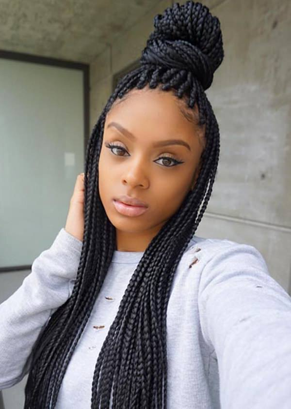 55 Inspirational Jumbo Box Braids To Rock – Style Easily Pertaining To Most Recently Long Micro Box Braid Hairstyles (View 8 of 25)