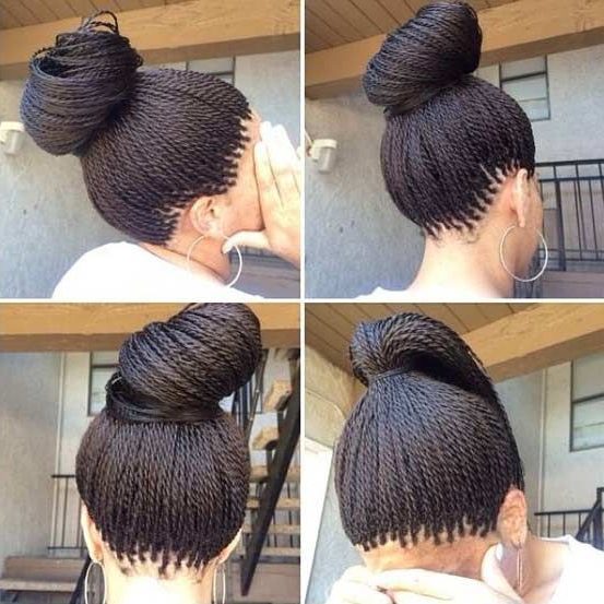 61 Beautiful Micro Braids Hairstyles | ??????? | ?????? For Most Recently Micro Twist Ponytail Hairstyles (View 18 of 25)