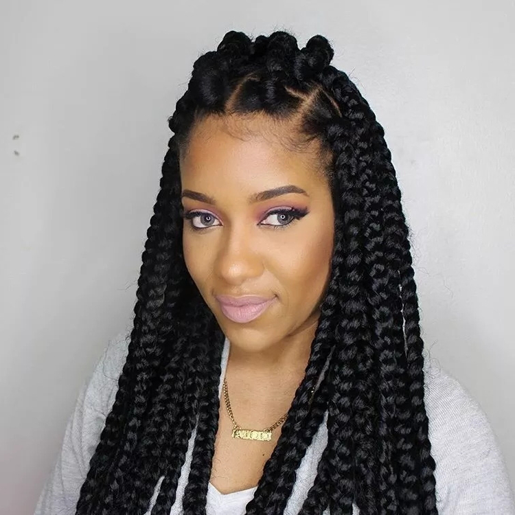 75 Amazing African Braids, Check Out This Hot Trend For Summer within Current Partial Updo Rope Braids With Small Twists