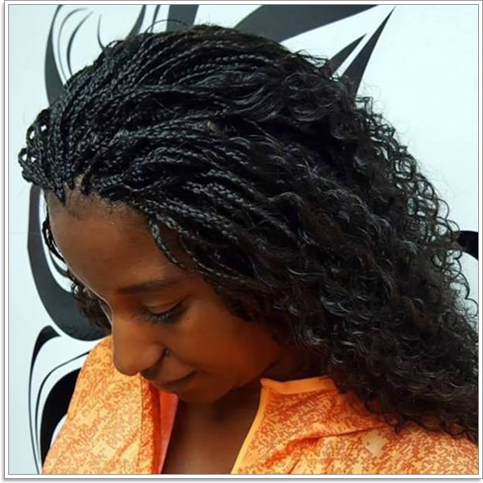 76 Micro Braids To Revamp Your Appearance For 2019 Regarding Most Popular Micro Braid Hairstyles With Curls (View 3 of 25)