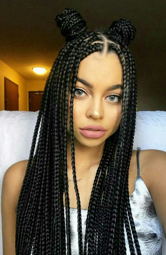 8 Center Parted Box Braids Hairstyles For You   Black Girl Regarding Most Up To Date Centre Parted Long Plaits Braid Hairstyles (View 2 of 25)