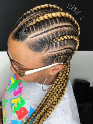 Black Braided Hairstyles 2019 – Big, Small, African, 2 And 4 For Recent Ponytail Braid Hairstyles With Thin And Thick Cornrows (View 15 of 25)