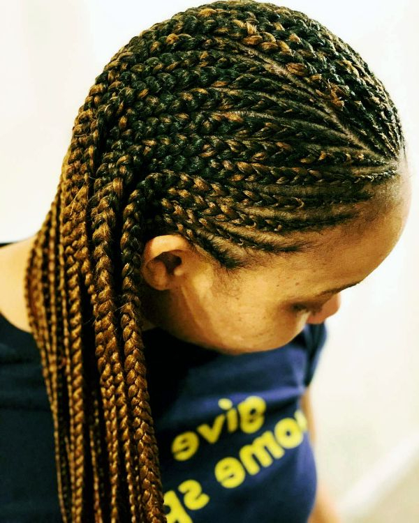 Box Braids Hairstyles| 24 Entrancing Braided Hairstyles Regarding Latest Multicolored Bob Braid Hairstyles (View 17 of 25)