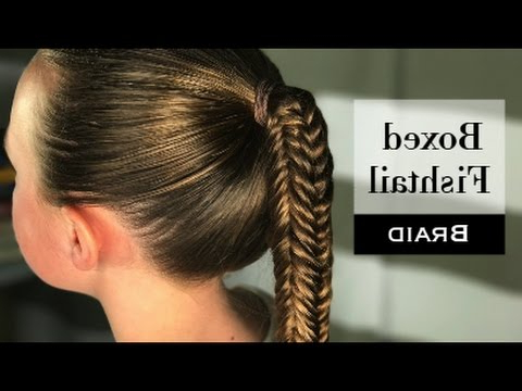 Boxed Fishtail Braiderin Balogh For Most Current 3D Mermaid Plait Braid Hairstyles (View 4 of 25)