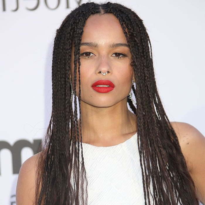 Everything You Need To Know About The History Of Braids Inside Most Recently Afro Under Braid Hairstyles (View 24 of 25)