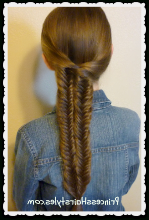 Fishtail Illusion Braid (Mermaid Braid) Hairstyle with regard to Most Recently Mermaid Braid Hairstyles With A Fishtail