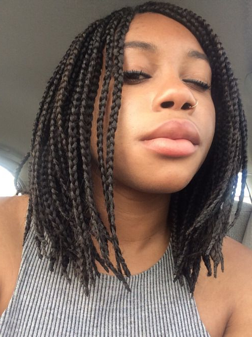 Image Result For Shoulder Length Box Braids | Natural Hair Inside Most Current Black Shoulder Length Braids With Accents (View 8 of 25)