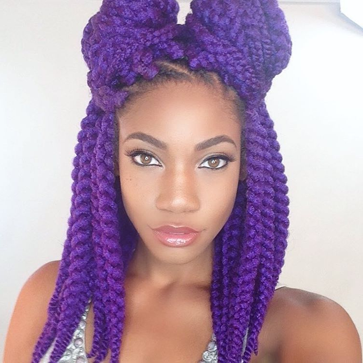 Joyvivre Purple Twists, Chunky Twists, Box Braids, Double Inside Most Up To Date Purple Passion Chunky Braided Hairstyles (View 8 of 25)