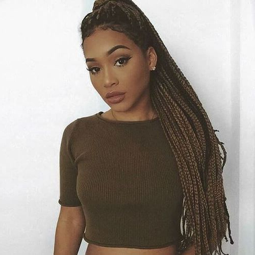 Featured Photo of Light Brown Braid Hairstyles