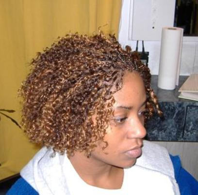 Micro Braids Curly Hairstyle Throughout Most Current Micro Braid Hairstyles With Curls (View 13 of 25)