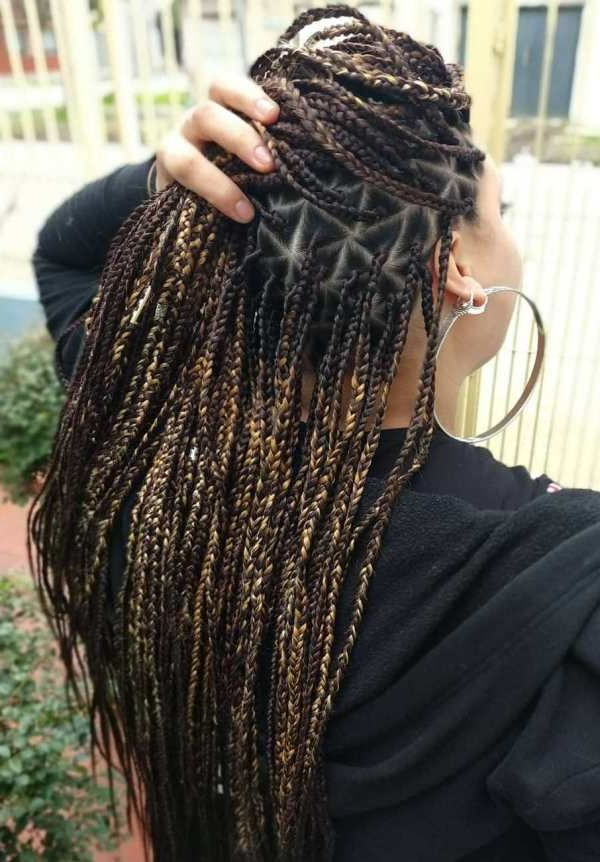 Triangle Braids: Taking Your Box Braids To The Next Level In Newest Tiny Twist Hairstyles With Caramel Highlights (View 5 of 25)