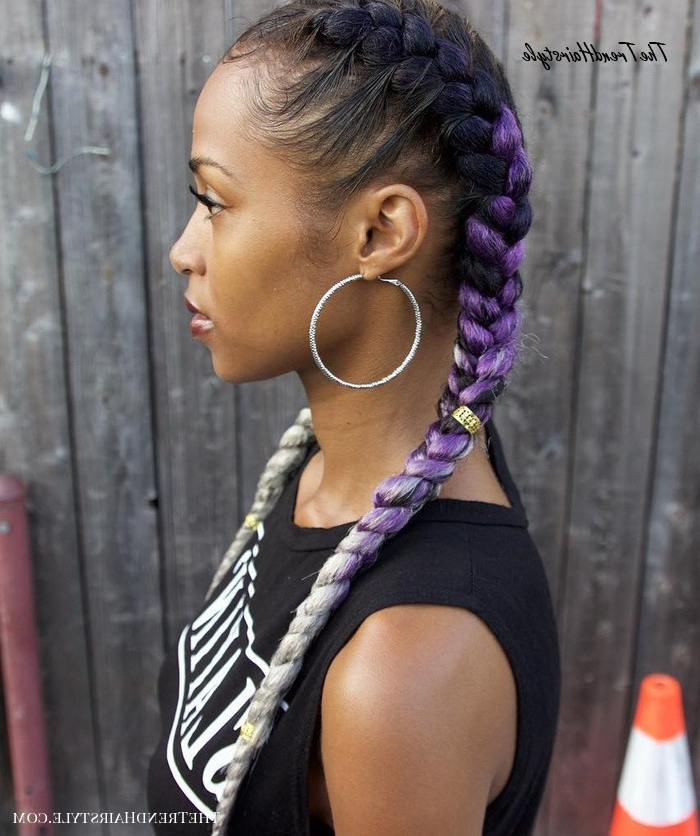 Two Ombre Braids – 20 Under Braids Ideas To Disclose Your In Latest Two Ombre Under Braid Hairstyles (View 3 of 25)