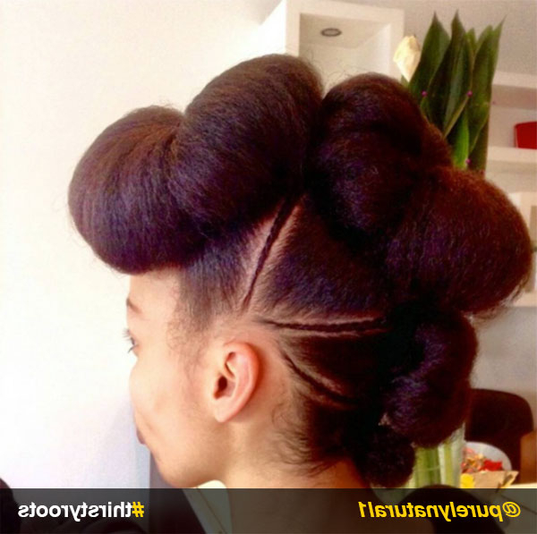 13 Natural Hair Updo Hairstyles You Can Create Intended For Twisted Faux Hawk Updo Hairstyles (View 19 of 25)