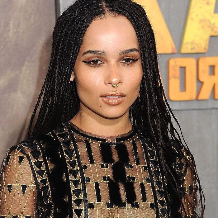 30 Fun Braided Hairstyles For Long Hair Intended For Best And Newest Side Cornrows Braided Hairstyles (View 25 of 25)