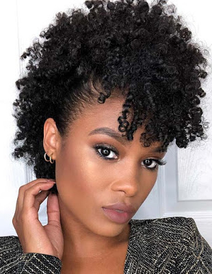 39 Afro Faux Hawk Braids Hairstyles For African American To With Regard To Most Recently Faux Hawk Braided Hairstyles (View 23 of 25)