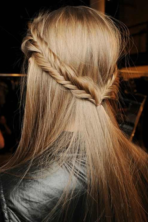 Half Up Half Down Braided Hairstyle – Women Hairstyles Intended For Most Popular Fishtail Crown Braided Hairstyles (View 23 of 25)