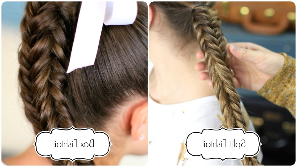 How To Create A Messy Split Fishtail   Cute Girls Hairstyles In Newest Braided Underside Hairstyles (View 21 of 25)