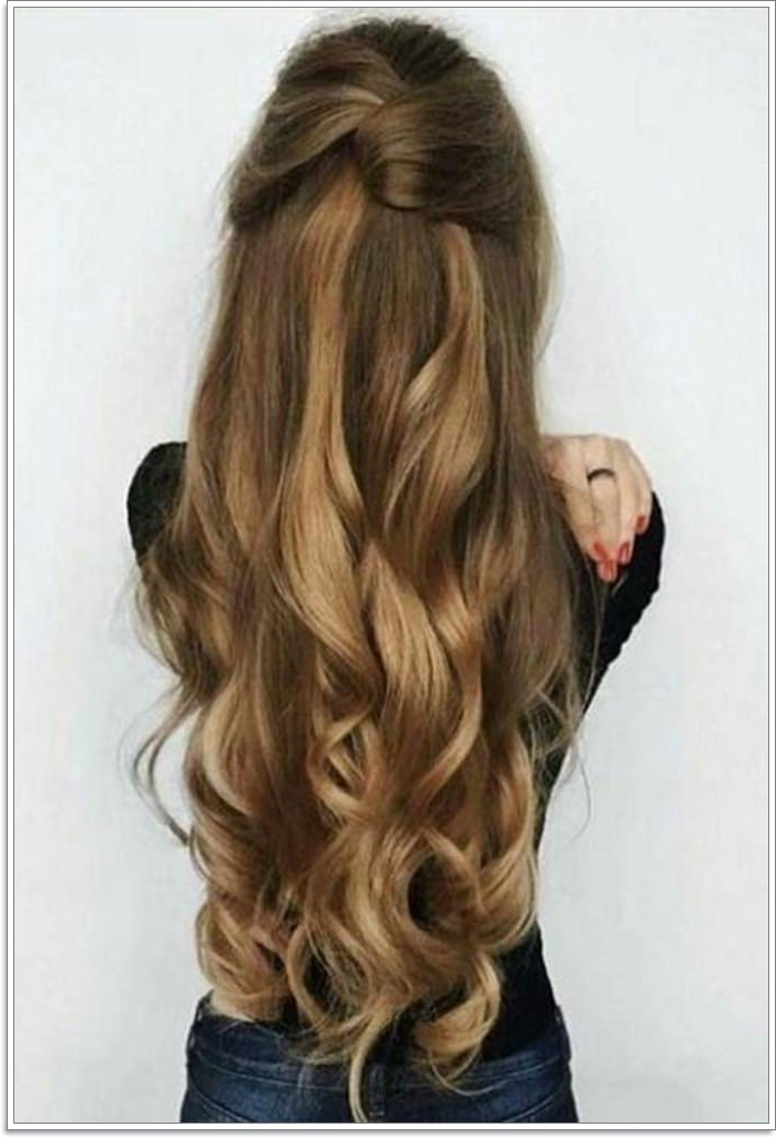 135 Whimsical Half Up Half Down Hairstyles You Can Wear For Pertaining To Loose Waves Hairstyles With Twisted Side (View 11 of 25)