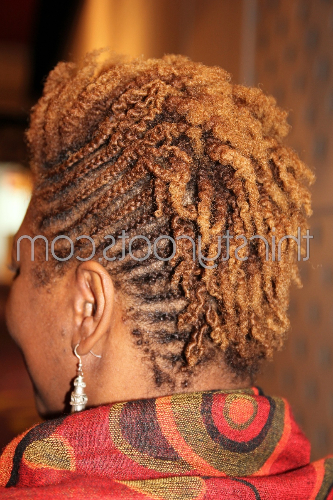 Braids And Mohawk With Twisted Braids Mohawk Hairstyles (View 18 of 25)