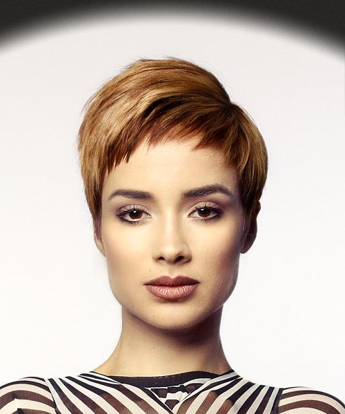 Highlights For Short Hair Within Highlighted Pixie Hairstyles (View 23 of 25)